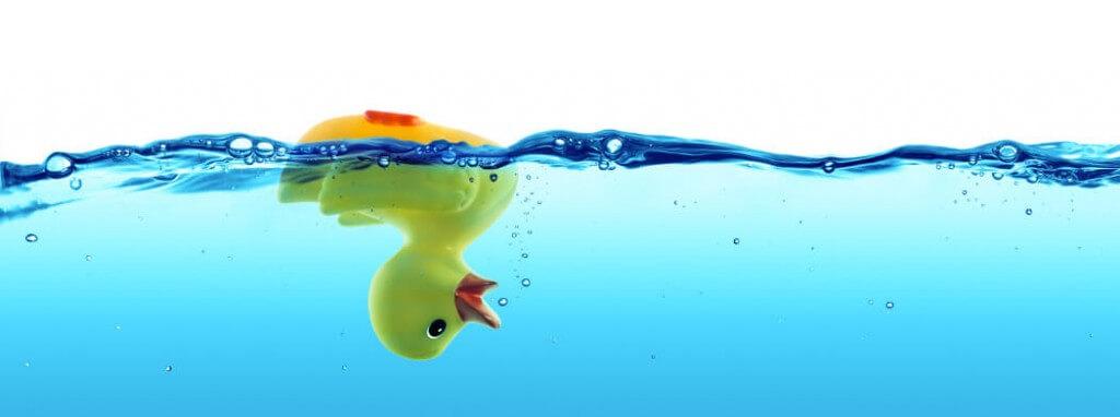 dead duck
